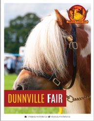 Dunnville Fair Profile